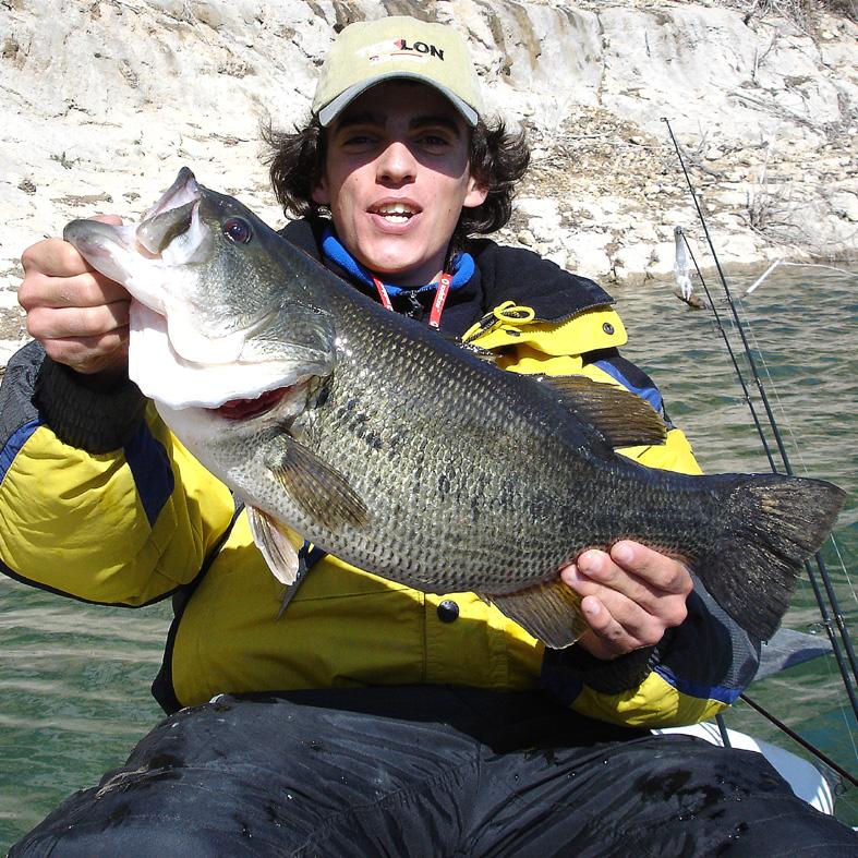 bass-3-150-gr